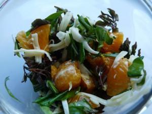 salat_karulaugu lehed võilille lehed naadi lehed klementiin emmentali tüüpi juust